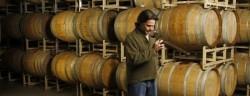 Bruno Wine Tasting